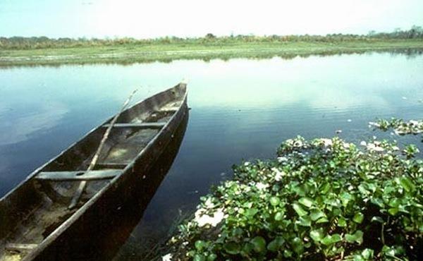 Kaziranga, Assam, India