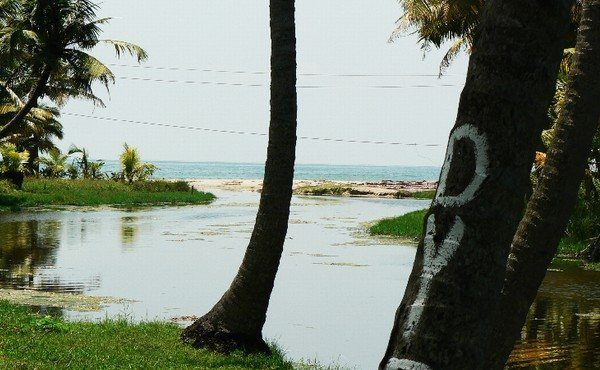 Mararikulam, Kerala, India