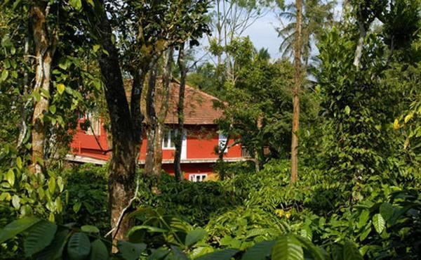 Aranyakam in Meppadi, Kerala
