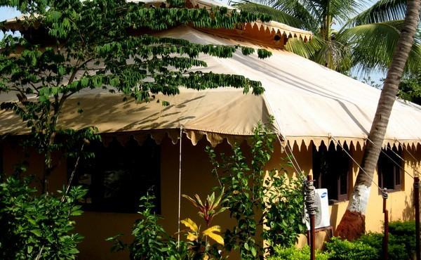 Lion Safari Camp in Sasangir, Gujarat
