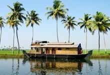 Jungles & Backwaters