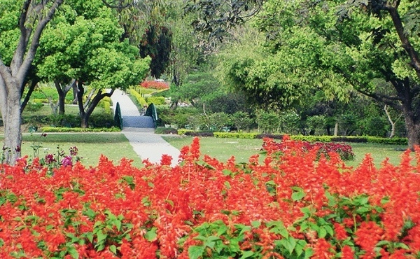 Chandigarh, The first modern city of independent India/