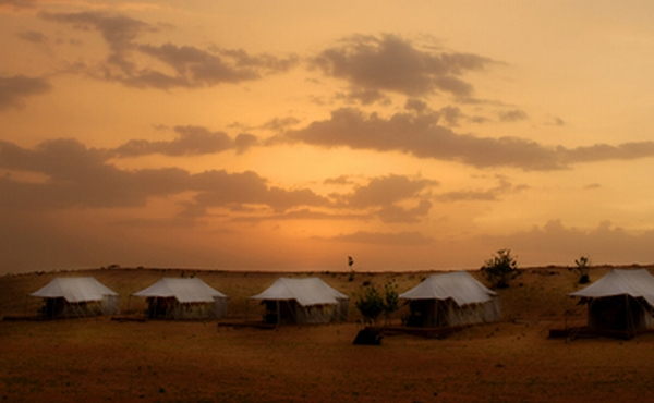 Custom Tour: Rajasthan Safari